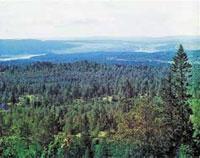 Вид на Златоуст с Александровской сопки, на которой была построена искровая радиостанция «Уржумка». 1909 год. Фото из коллекции С. М. Прокудина-Горского